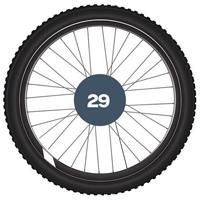 """29"""" MTB plašči"""